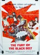 Fury of the Black Belt (1973)