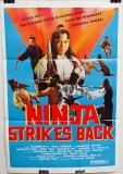 Ninja Strikes Back (1982)