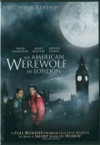 American Werewolf in London (1981) , An
