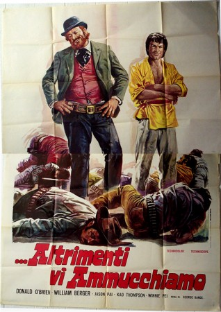 Kung Fu Brothers in the Wild West (1973)
